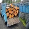 قطع درختان جنگلی به تاراج بردن منابع ملی کشور است,اخبار چوب , خبر چوب , اخبار صنعت چوب , صنعت چوب و کاغذ