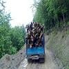 کشف دو تن چوب آلات قاچاق در آستارا,اخبار چوب , خبر چوب , اخبار صنعت چوب , صنعت چوب و کاغذ