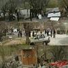 جمعآوری ۱۰۰ واحد تخریبگر بلوط در سیروان,اخبار چوب , خبر چوب , اخبار صنعت چوب , صنعت چوب و کاغذ