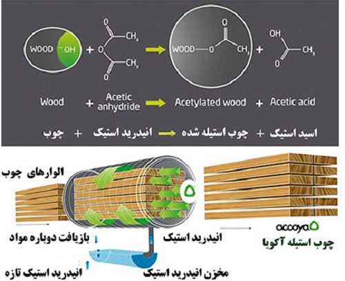چوبهای آکویا - accoya wood