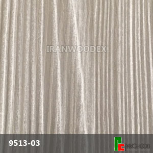 Arpa-9513-03
