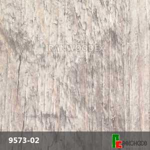 Arpa-9573-02