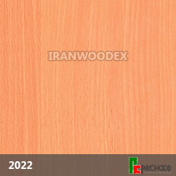 2022-باباریا