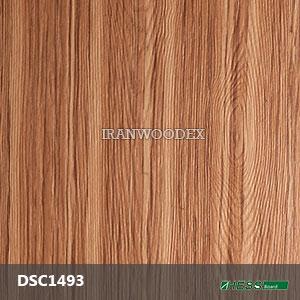 DSC1493