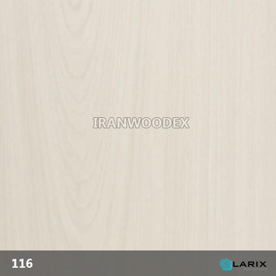 116-White Maple