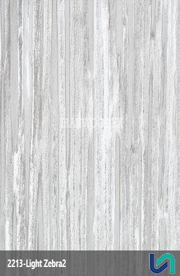ام دی اف آسا-2213-زبرا روشن2