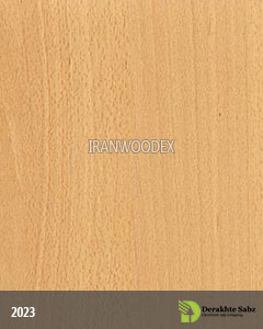 صفحه کابینت درخت سبز-2023-چوب ملچ برفی