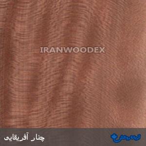 روکش چوبی آریانا-170-چنارآفریقایی
